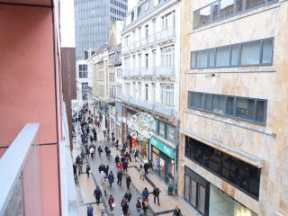 City center Brussel 4.10 - Ixelles vacation rentals