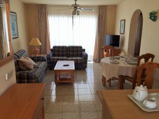 Fantastic 2 bedroom penthouse - San Miguel de Abona vacation rentals