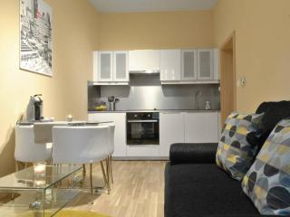 Brand New 2 rooms Flat close to city centre - Prague vacation rentals