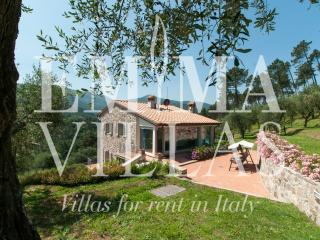 Beautiful 4 bedroom Villa in Lucca with Internet Access - Lucca vacation rentals