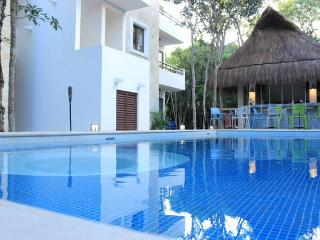 2 Bedrooms Apartment + Breakfast! - Akumal vacation rentals