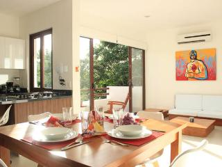 Comfortable equipped 1 Bedroom Condo & Breakfast! - Akumal vacation rentals