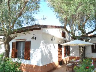 1 bedroom Villa with Internet Access in Palinuro - Palinuro vacation rentals