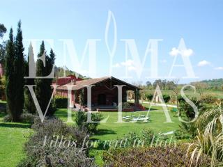 Bright Villa with Internet Access and Dishwasher - Rome vacation rentals