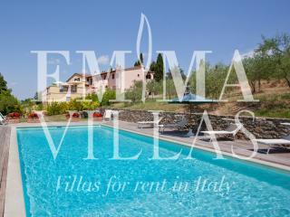 Bright 8 bedroom Arezzo Villa with Internet Access - Arezzo vacation rentals