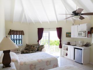 Ámazing!(2)2 Bedroom Sea- side Condo ,allinclusive - Governor's Harbour vacation rentals