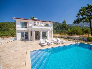 Villa Ottoman Garden (Islamlar - Kalkan) - Kalkan vacation rentals