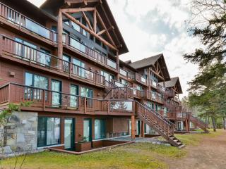 Perfect Condo with Internet Access and A/C - Saint Michel des Saints vacation rentals