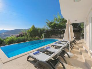 Villa Palm Tree (Kiziltas - Kalkan) - Kalkan vacation rentals