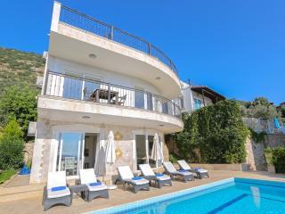 Villa Palm Tree - Kalkan vacation rentals
