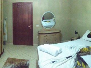 2 bedroom Apartment with Internet Access in Tirana - Tirana vacation rentals