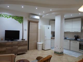 Incantevole appartamento a 50 metri dalla spiaggia - San Vincenzo vacation rentals