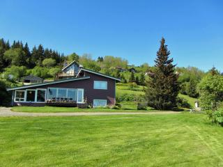 Lovely House with Internet Access and Television - Homer vacation rentals