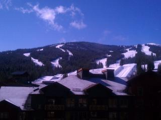 Great Slopeviews,Corner unit. Great rates. Great Summer Rates. - Copper Mountain vacation rentals