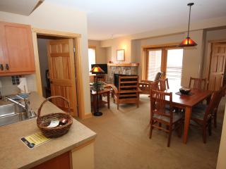 Great Slopeviews,Corner unit. Great rates. June Specials from $125/night. - Copper Mountain vacation rentals
