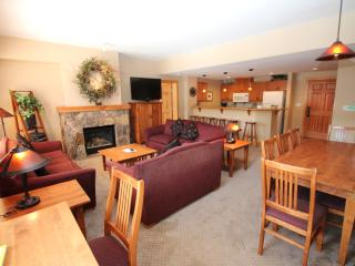 Slope View 3BR/3BA. Washer and Dryer in Unit! August Special from $175night. - Copper Mountain vacation rentals