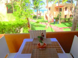 Nice Condo with Internet Access and A/C - Punta Cana vacation rentals