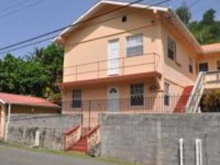 Nice 2 bedroom Grand Anse Apartment with Internet Access - Grand Anse vacation rentals