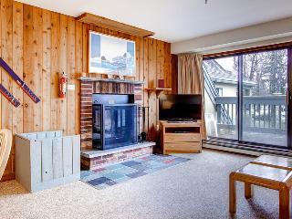 2 bedroom House with Internet Access in Killington - Killington vacation rentals