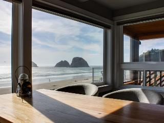 Stunning and redesigned oceanfront condo - dog-friendly, too! - Oceanside vacation rentals