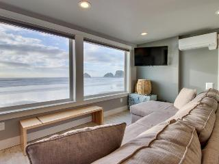 Amazing oceanfront & dog-friendly condo w/ jetted tub & close beach access! - Oceanside vacation rentals
