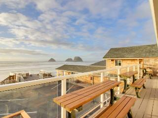 Dog-friendly, completely remodeled modern home with beachfront views! - Oceanside vacation rentals