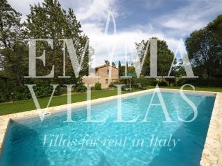 Podere Madonna di Mezzo 6 - Siena vacation rentals