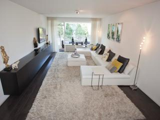 Amazing apartment nearby Centre&RAI exhibition - Amsterdam vacation rentals
