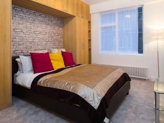 BRAND NEW LARGE 3 BED 3 BATH IN CENTRAL LONDON - London vacation rentals
