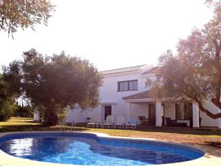 Superb 4 bedroom villa with pool - Novo Sancti Petri vacation rentals