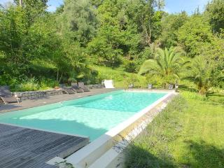 Villa with Huge Infinity Pool, Mountain views - Vence vacation rentals