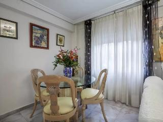 [478]Confortable 2 bedroom apartment with patio - Seville vacation rentals