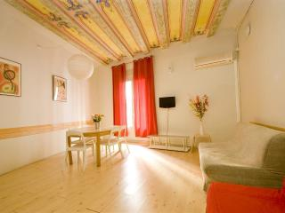 Lola - Barcelona vacation rentals