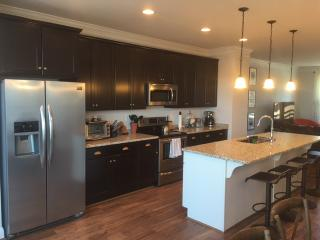 Luxury Townhome near downtown and UVA - Charlottesville vacation rentals