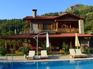 4 bedroom Manor house with Internet Access in Orhaniye - Orhaniye vacation rentals