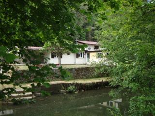 Rare Riverside Property with Private Fishing - Civray vacation rentals
