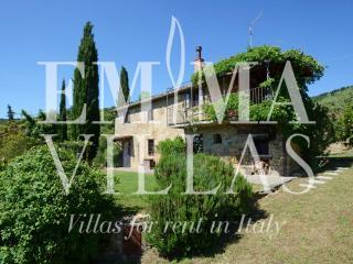 Typical Tuscan Stone Farmhouse Near Cortona - Cortona vacation rentals