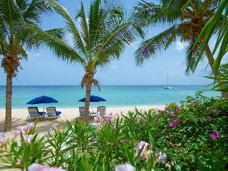 Luxury 3 bedroom beach front apartment - Paynes Bay vacation rentals