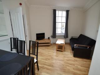 2 BR FLAT NEAR OLD STREET AND ANGEL AMZNG LOCATION - London vacation rentals
