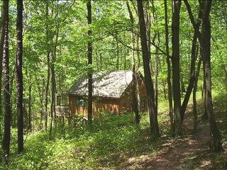 Pointe of Nature-Greenbriar Cabin - Laurelville vacation rentals