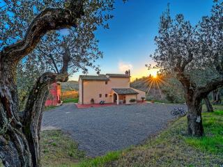 cottage on the hills - Montespertoli vacation rentals
