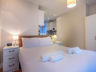 Compact London Holiday Studio - London vacation rentals
