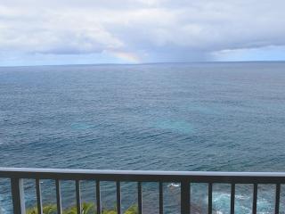 OCEAN FRONT, EDGE OF CLIFF KAUAI - Princeville vacation rentals