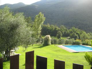 Florence family villa + pool . Cosy and peaceful - Londa vacation rentals