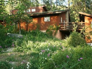 Spacious Mountain Retreat near Yosemite - Mariposa vacation rentals