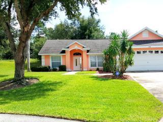 VERY PRIVATE South Pool DISNEY Orlando Vacation home WIFI - Lake Buena Vista vacation rentals