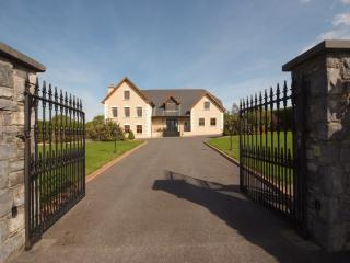 6 bedroom House with Internet Access in Aghadoe - Aghadoe vacation rentals