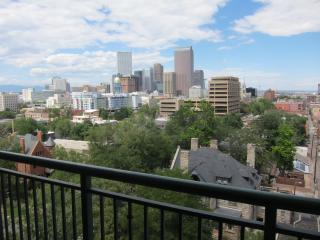 Fabulous Furnished Apt in the Heart of Denver - Denver vacation rentals
