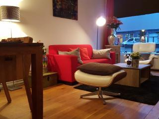 Center AC Home+Bikes ground floor - Amsterdam vacation rentals