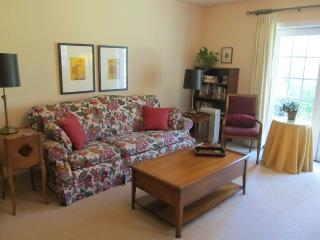 Beautiful, convenient one bedroom apartment - San Francisco vacation rentals